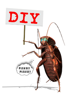 Choose between Professional Versus DIY Pest Control.