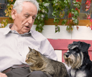 Live-in care One of the most important considerations