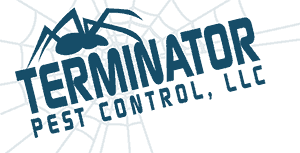 Unimportant Exertion Pest Control Enfield